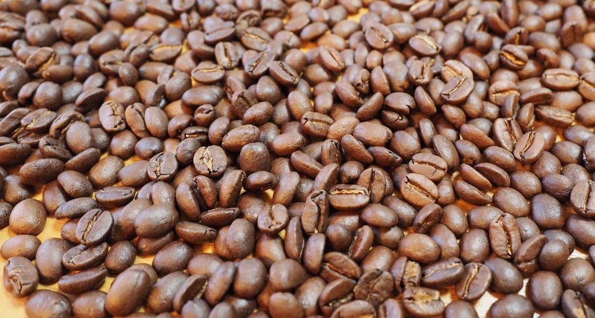 欅cafe_コーヒー豆_パナマ バルマウンテン_綺麗なコーヒー豆