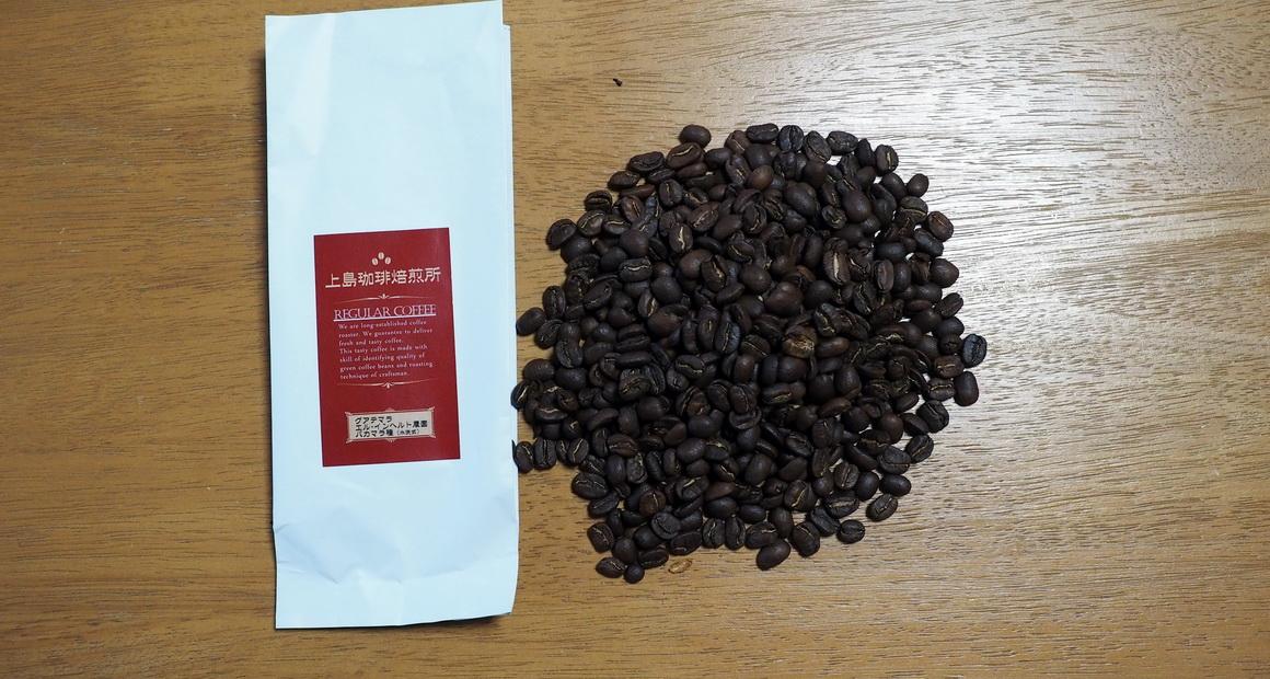上島珈琲_グアテマラ_エルインヘルト農園_パカマラ_コーヒー豆の状態
