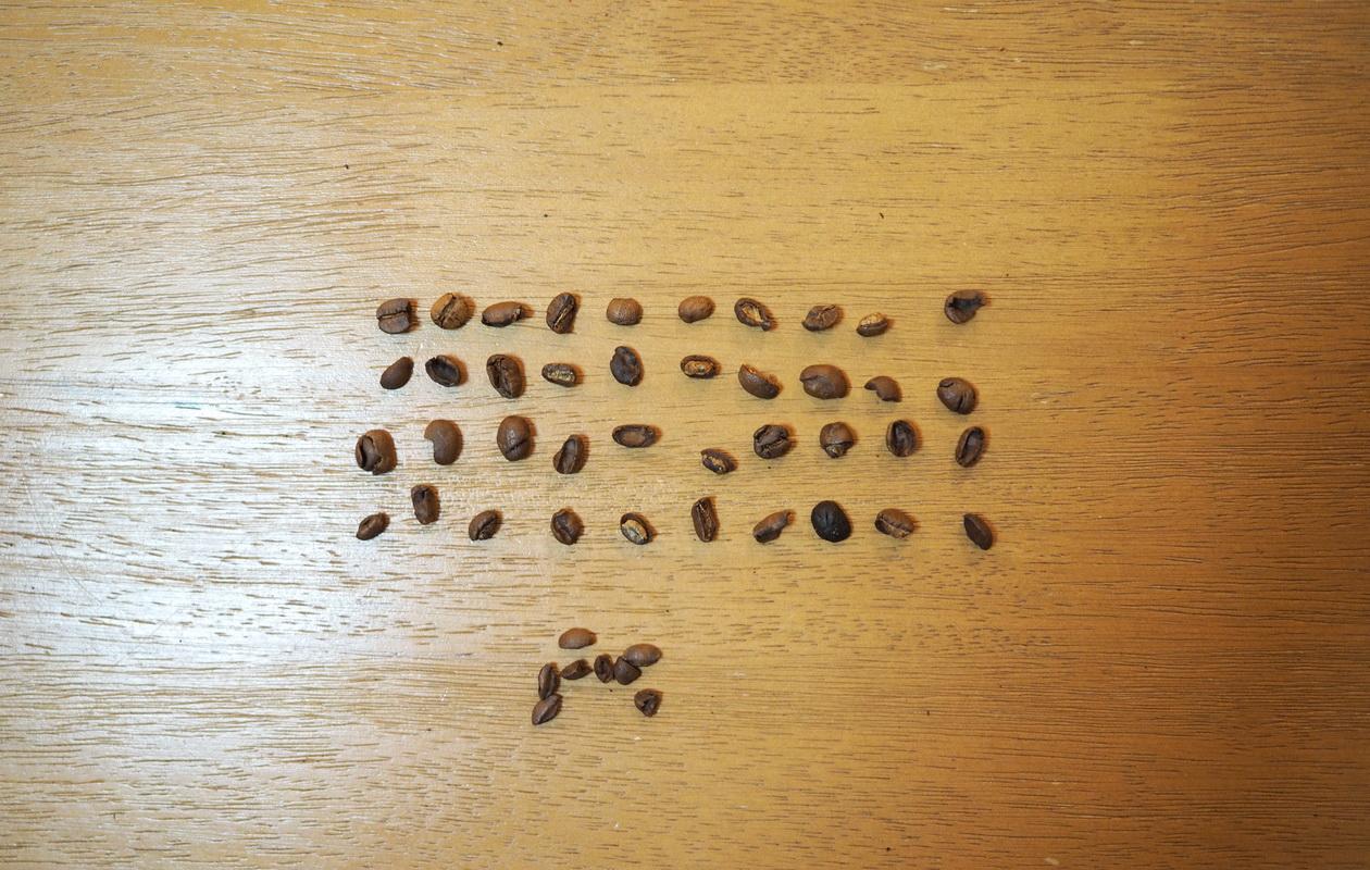 銀座カフェーパウリスタのブルーマス デル スルキ(コーヒー豆)の欠点豆