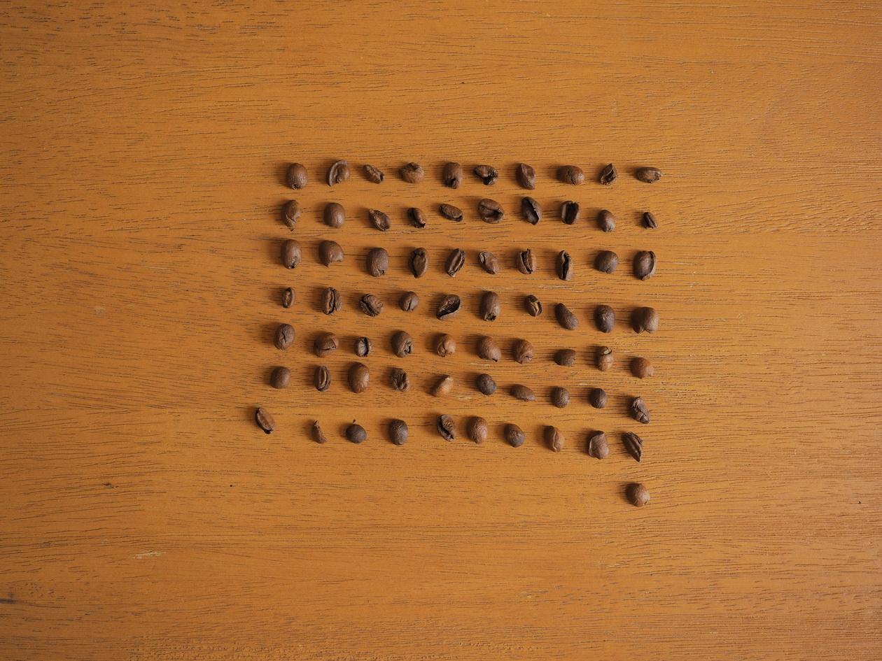 コーヒー豆_Tukikoyaのケニヤ エンデベス農園 ナチュラル_欠点豆