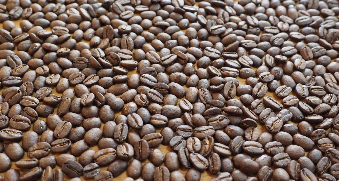 箱根焙煎珈琲_コーヒー豆_マイルドブレンド_とても綺麗な状態