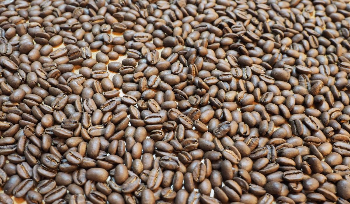 欅cafe_コーヒー豆_パナマエスメラルダゲイシャ_プライベートコレクション_豆の状態