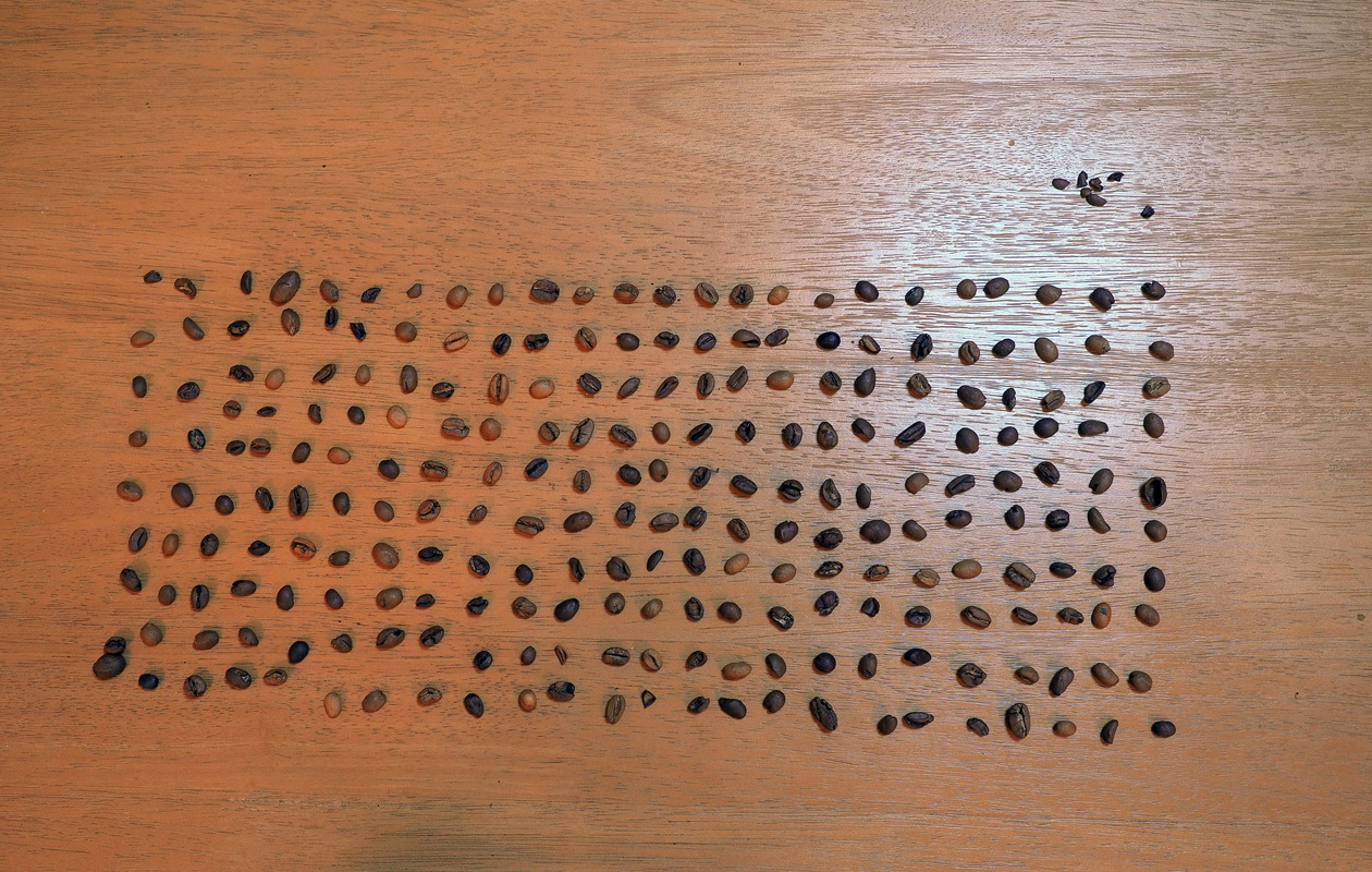 通販で藤田珈琲からコーヒー豆のお取り寄せ_エチオピアモカブレンド_欠点豆