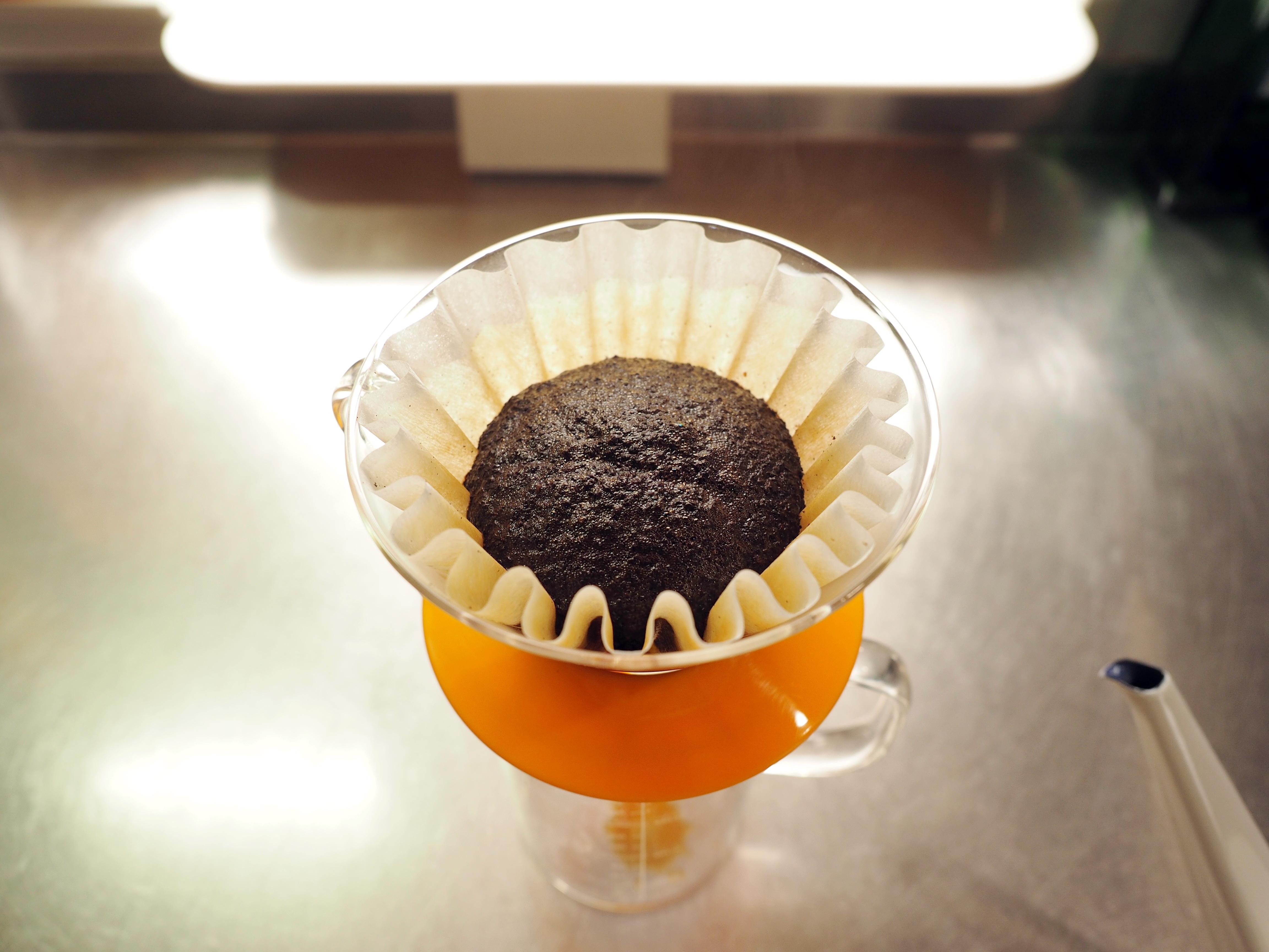 楽天で購入のコーヒー豆「コガメコーヒー」の『極上カビなしコーヒー豆』_蒸らし中