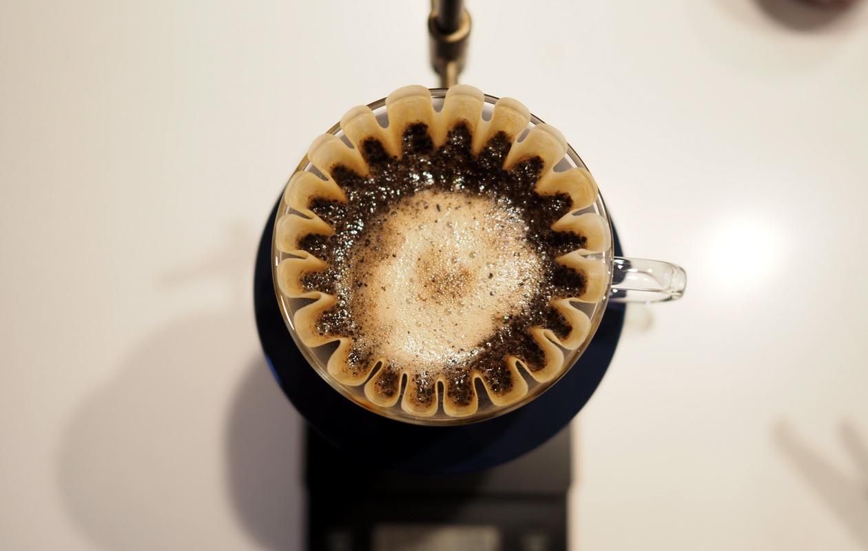 inuit coffee roasterのトライアルセット_エチオピア グジ ゲイシャを抽出中